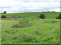 SD6972 : Old railway embankment below Yarlsber by Stephen Craven