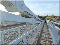 SH5571 : Suspension ties on the Menai Bridge by Oliver Dixon