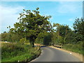 TQ5482 : Launder's Lane, near Rainham by Malc McDonald