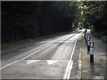 TQ5684 : Harwood Hall Lane, Corbets Tey by Malc McDonald