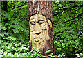 J4682 : Tree carving, Crawfordsburn Country Park (September 2017) by Albert Bridge