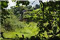 SN0406 : Scotland Wood by Stephen McKay