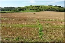 ST6601 : Footpath to Weam Common Hill by Derek Harper