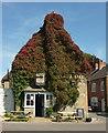 ST6601 : Royal Oak, Cerne Abbas by Derek Harper