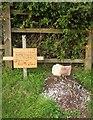SX8966 : Badger's grave, Riviera Way, Torquay by Derek Harper