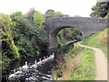 SP9011 : A family of swans approach Bridge 5 on the Wendover Arm by Chris Reynolds