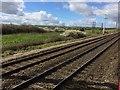 SU3991 : View from a Reading-Swindon train - Fields near Grove by Nigel Thompson