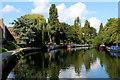 TQ3488 : River Lea Navigation at Markfield Park by Chris Heaton