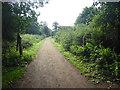 TQ5493 : The old gateposts of Dagnam Park by Marathon