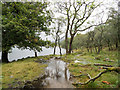 NY1114 : Flooded path beside Ennerdale Water by Trevor Littlewood
