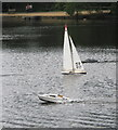 TQ0083 : Black Park Model Boat regatta - yacht and powerboat by David Hawgood