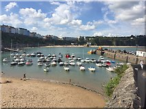 SN1300 : Tenby Harbour by Alan Hughes