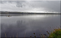 NH5557 : Upper reaches of the Cromarty Firth by valenta