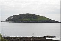 SX2551 : Looe Island by N Chadwick