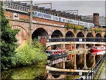 SJ8297 : Bridgewater Canal, Slate Wharf Bridge and Castlefield Viaduct by David Dixon