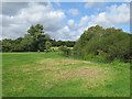TL4355 : Grantchester Meadows and the River Cam by John Sutton