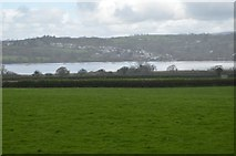 SX4563 : Bere Ferrers across the River Tavy by N Chadwick