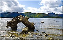NY2621 : Calfclose Bay, Derwentwater by peter maddison