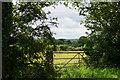 SJ4766 : Field entrance off Holme Street by Bill Boaden