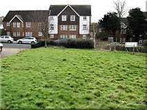TQ7407 : Houses in Buckingham Road, Bexhill by Patrick Roper