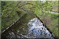 TQ2489 : Dollis Brook by N Chadwick
