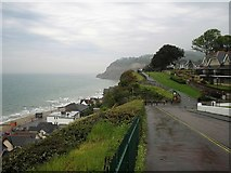 SZ5881 : Shanklin Cliff Path by norman griffin