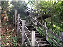 TL1215 : Nickey Line Stairway by Gary Fellows