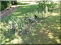 TQ9856 : The pets' cemetery at Belmont Gardens by Marathon
