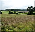 TG1212 : Crop fields south of Ringland by Evelyn Simak
