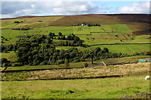 SE0328 : Across Luddenden Dean from Castle Carr Road by Chris Heaton