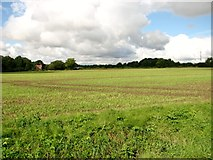 TG1301 : View towards Lower Spinks Lane by Evelyn Simak