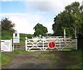 TG1302 : Lower Spinks Lane gated level crossing by Evelyn Simak