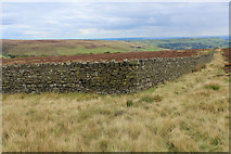 SE0130 : Stone Wall above Scout Top by Chris Heaton