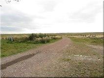 NZ2294 : Farm track near East Stobswood by Graham Robson
