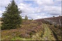 NO0254 : Track to Lochan Oisinneach Mòr by Richard Webb