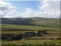 NY6946 : Building and wall complex on Park Fell by Trevor Littlewood