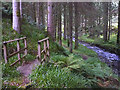 NT3308 : Footbridge by the Aithouse Burn by Karl and Ali
