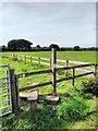 TQ6004 : Stile on 1066 Country Walk by PAUL FARMER