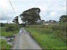 SX5494 : The lane to Southcott by David Smith