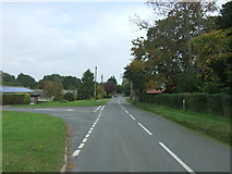 TG3204 : National Cycle Route 1, Rockland St Mary by JThomas