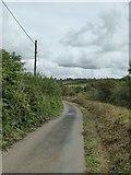 SX5697 : Road to Folly Gate by David Smith