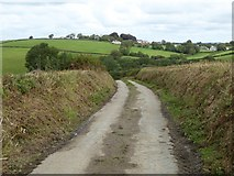 SX5598 : Road to Millbrook by David Smith