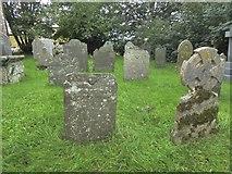 SX5699 : Gravestones in Inwardleigh churchyard by David Smith