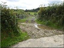 SS5400 : Access track near Norleigh Barton by David Smith