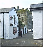 J1811 : The rear  of Ma Baker's Bar and Beer Garden, Carlingford by Eric Jones