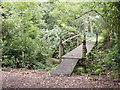 SJ8101 : Site Footbridge by Gordon Griffiths