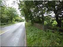 SS5403 : A386 bridge over Hatherleigh Moor Brook by David Smith