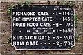 TQ2074 : Richmond Park by Peter Trimming