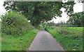 TM3992 : Heath Road, Geldeston by Roger Jones