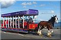 SC3876 : Horse drawn tram, Douglas by Robin Drayton